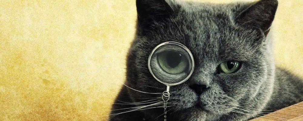 усыпить кота Москва